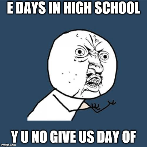 Y U No Meme | E DAYS IN HIGH SCHOOL Y U NO GIVE US DAY OF | image tagged in memes,y u no | made w/ Imgflip meme maker