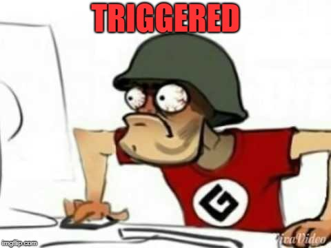 TRIGGERED | image tagged in grammer nazi | made w/ Imgflip meme maker
