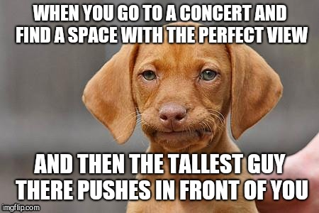 Small people problems | WHEN YOU GO TO A CONCERT AND FIND A SPACE WITH THE PERFECT VIEW AND THEN THE TALLEST GUY THERE PUSHES IN FRONT OF YOU | image tagged in dissapointed puppy | made w/ Imgflip meme maker