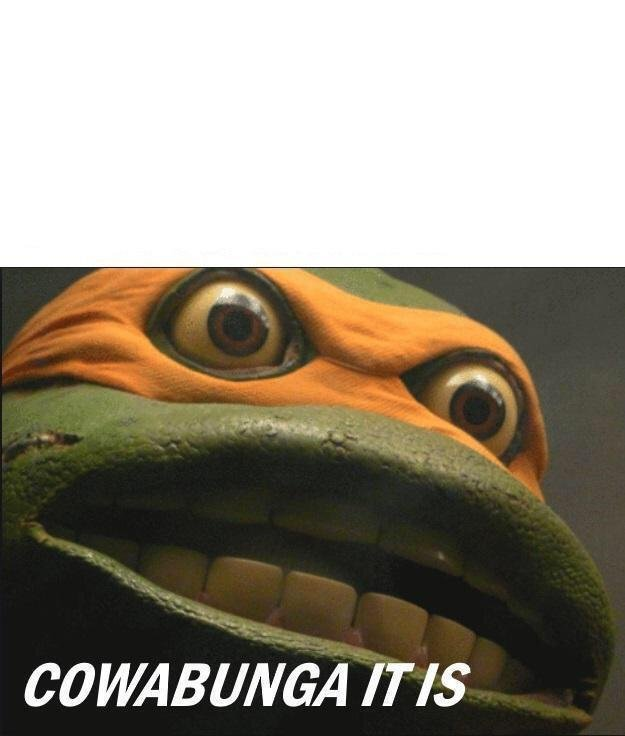 Cowabunga It Is Meme Template