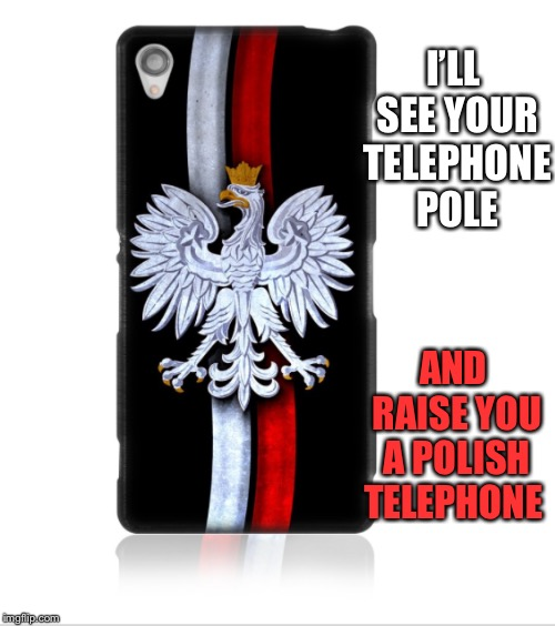 I'LL SEE YOUR TELEPHONE POLE AND RAISE YOU A POLISH TELEPHONE | made w/ Imgflip meme maker