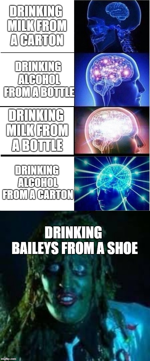 DRINKING MILK FROM A CARTON DRINKING ALCOHOL FROM A BOTTLE DRINKING MILK FROM A BOTTLE DRINKING ALCOHOL FROM A CARTON DRINKING BAILEYS FROM  | image tagged in memes,expanding brain | made w/ Imgflip meme maker