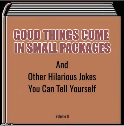 And other hilarious jokes you can tell yourself | GOOD THINGS COME IN SMALL PACKAGES | image tagged in and other hilarious jokes you can tell yourself | made w/ Imgflip meme maker