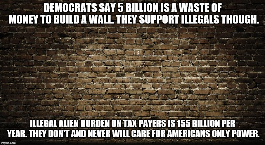 wall | DEMOCRATS SAY 5 BILLION IS A WASTE OF MONEY TO BUILD A WALL.THEY SUPPORT ILLEGALS THOUGH. ILLEGAL ALIEN BURDEN ON TAX PAYERS IS 155 BILLION | image tagged in build a wall | made w/ Imgflip meme maker