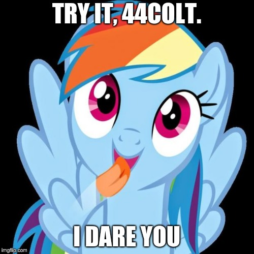 Rainbow Dash funny | TRY IT, 44COLT. I DARE YOU | image tagged in rainbow dash funny | made w/ Imgflip meme maker