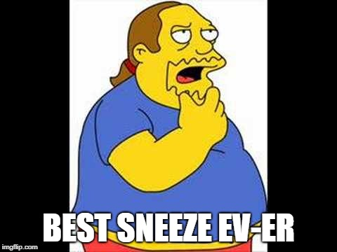 Best Ever | BEST SNEEZE EV-ER | image tagged in best ever | made w/ Imgflip meme maker