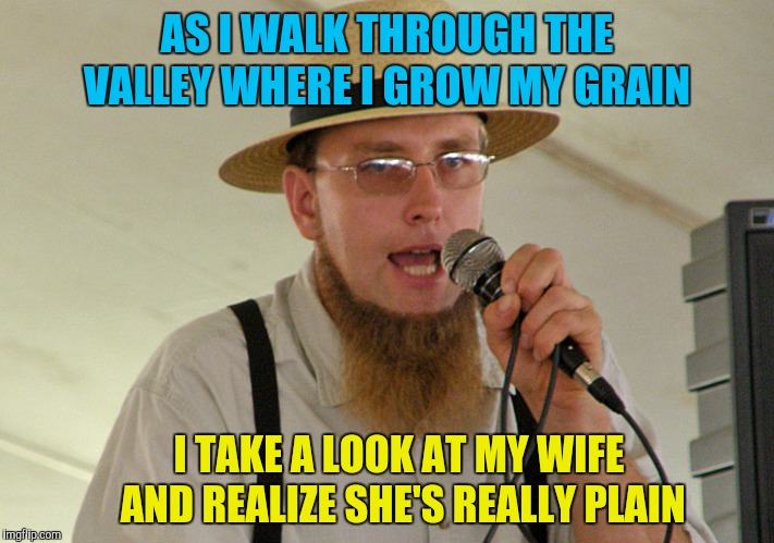 Living in an Amish Paradise  | AS I WALK THROUGH THE VALLEY WHERE I GROW MY GRAIN I TAKE A LOOK AT MY WIFE AND REALIZE SHE'S REALLY PLAIN | image tagged in memes,funny,amish,amish paradise,rapper,plain white | made w/ Imgflip meme maker