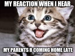 happy cat | MY REACTION WHEN I HEAR MY PARENTS R COMING HOME LATE | image tagged in happy cat | made w/ Imgflip meme maker