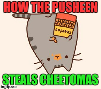 Pusheen | HOW THE PUSHEEN STEALS CHEETOMAS | image tagged in pusheen stole the cheetos,pusheen,cheetos,christmas,grinch,christmas cat | made w/ Imgflip meme maker