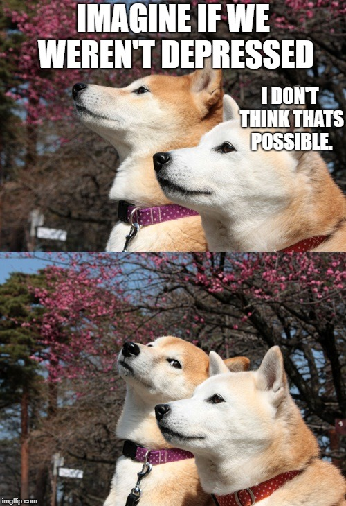 Bad pun dogs | IMAGINE IF WE WEREN'T DEPRESSED I DON'T THINK THATS POSSIBLE. | image tagged in bad pun dogs | made w/ Imgflip meme maker