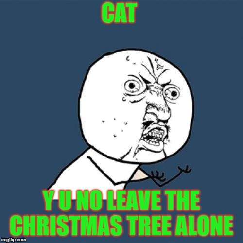 Y U No Meme | CAT Y U NO LEAVE THE CHRISTMAS TREE ALONE | image tagged in memes,y u no,cat,christmas,tree | made w/ Imgflip meme maker