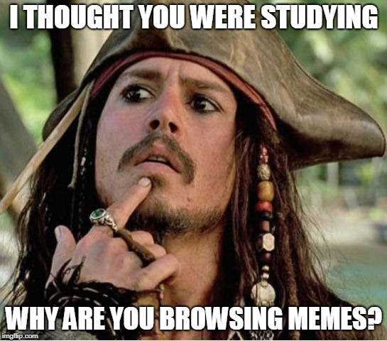 I THOUGHT YOU WERE STUDYING WHY ARE YOU BROWSING MEMES? | image tagged in gives pause pirate | made w/ Imgflip meme maker