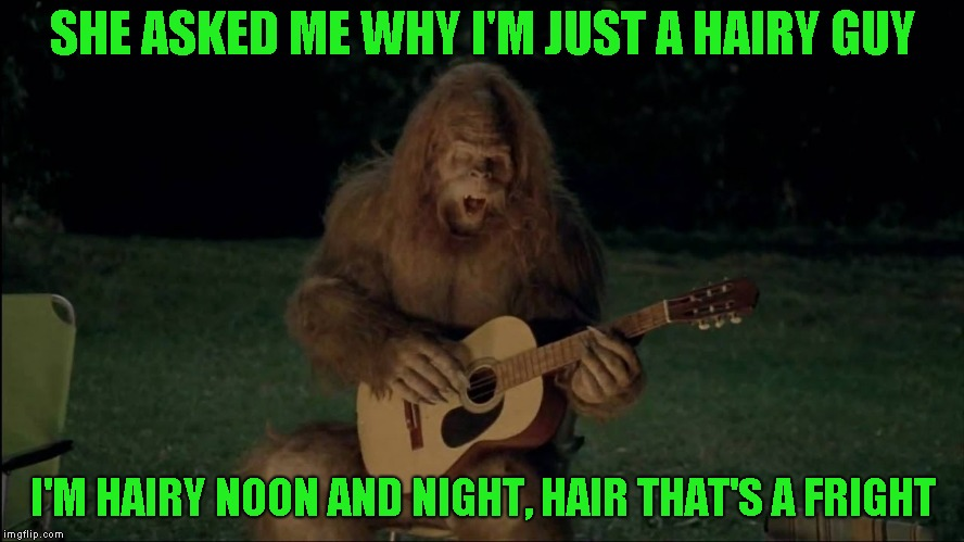 Jacklinks Presents HAIR the musical | SHE ASKED ME WHY I'M JUST A HAIRY GUY I'M HAIRY NOON AND NIGHT, HAIR THAT'S A FRIGHT | image tagged in bigfoot | made w/ Imgflip meme maker