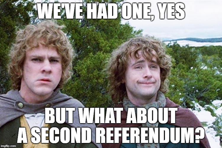hobbits | WE'VE HAD ONE, YES BUT WHAT ABOUT A SECOND REFERENDUM? | image tagged in hobbits,AdviceAnimals | made w/ Imgflip meme maker