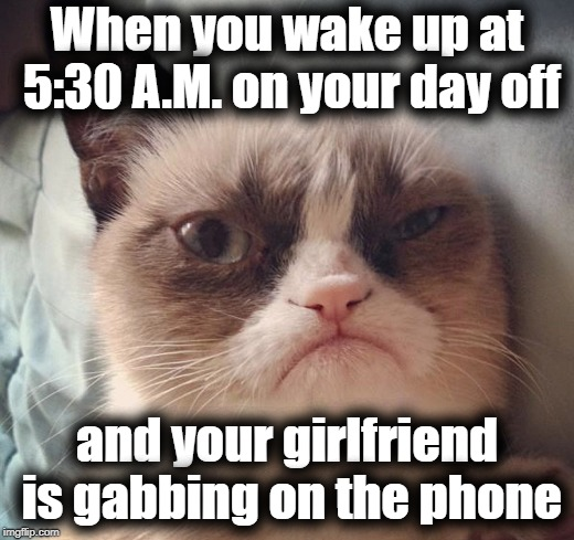 GRRRR! | When you wake up at 5:30 A.M. on your day off and your girlfriend is gabbing on the phone | image tagged in grumpy cat,grumpy,tired,grouchy,grrr | made w/ Imgflip meme maker