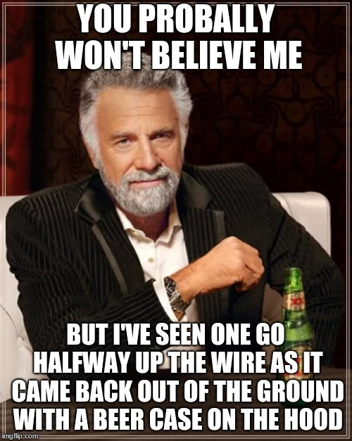 The Most Interesting Man In The World Meme | YOU PROBALLY WON'T BELIEVE ME BUT I'VE SEEN ONE GO HALFWAY UP THE WIRE AS IT CAME BACK OUT OF THE GROUND WITH A BEER CASE ON THE HOOD | image tagged in memes,the most interesting man in the world | made w/ Imgflip meme maker