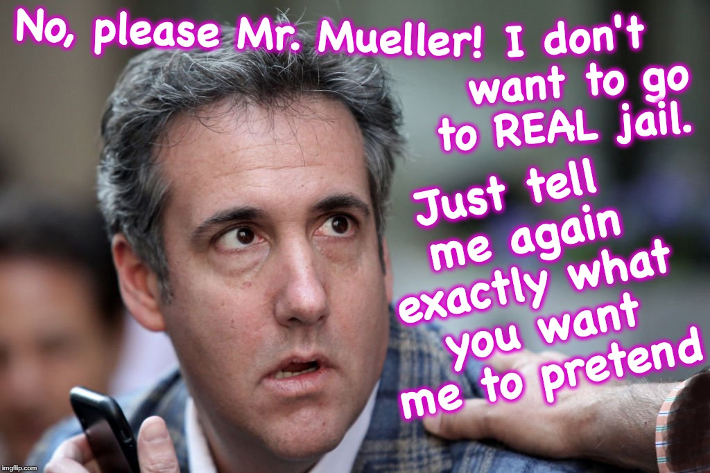 sadly, this probably isn't just satire | No, please Mr. Mueller! Just tell me again exactly what you want me to pretend I don't want to go to REAL jail. | image tagged in michael cohen,robert mueller | made w/ Imgflip meme maker