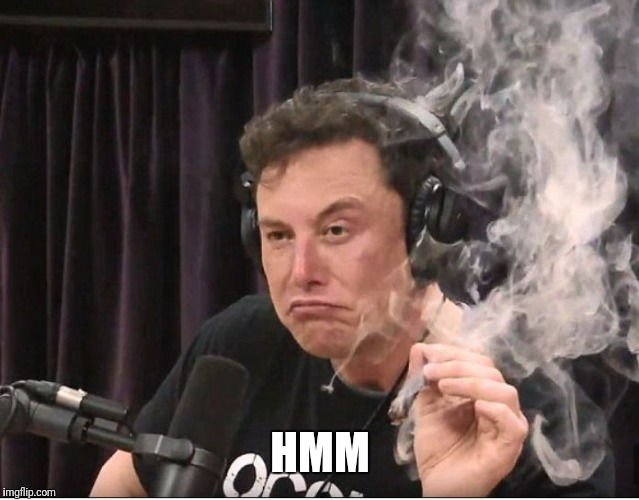 Elon Musk smoking a joint | HMM | image tagged in elon musk smoking a joint | made w/ Imgflip meme maker