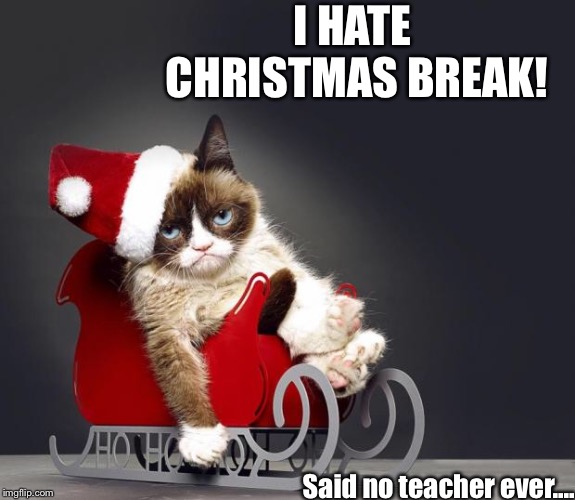Grumpy Cat Christmas HD | I HATE CHRISTMAS BREAK! Said no teacher ever.... | image tagged in grumpy cat christmas hd | made w/ Imgflip meme maker