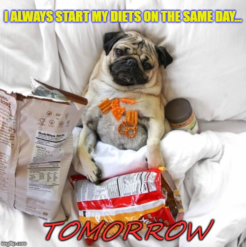 It's Not The Next Day Yet | I ALWAYS START MY DIETS ON THE SAME DAY... TOMORROW | image tagged in funny,junk food,lazy | made w/ Imgflip meme maker