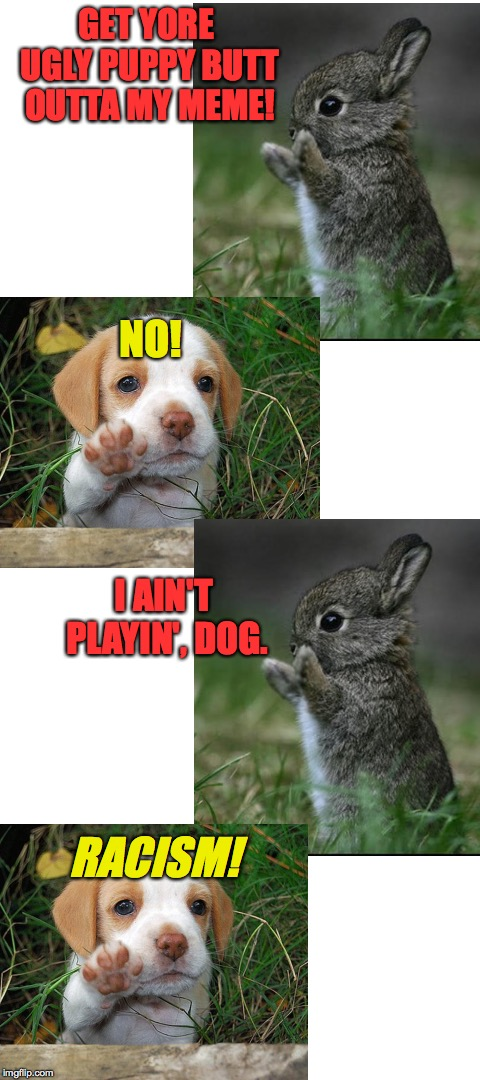 Words, actions, and interpretations. | GET YORE UGLY PUPPY BUTT OUTTA MY MEME! RACISM! NO! I AIN'T PLAYIN', DOG. | image tagged in blank white template,memes,cute bunny,dog puppy bye,racism | made w/ Imgflip meme maker
