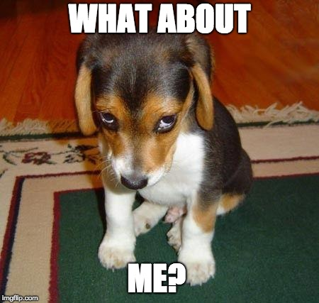Sad puppy | WHAT ABOUT ME? | image tagged in sad puppy | made w/ Imgflip meme maker