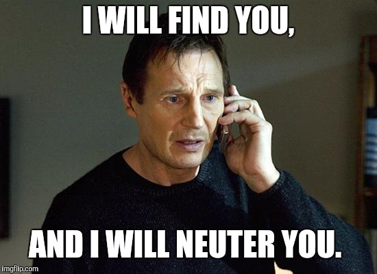 Liam Neeson Taken 2 Meme | I WILL FIND YOU, AND I WILL NEUTER YOU. | image tagged in memes,liam neeson taken 2 | made w/ Imgflip meme maker