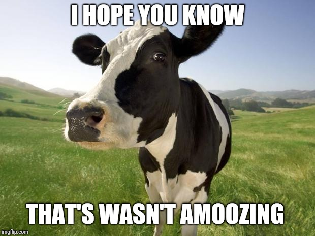 cow | I HOPE YOU KNOW THAT'S WASN'T AMOOZING | image tagged in cow | made w/ Imgflip meme maker