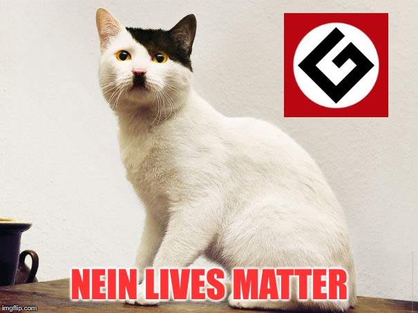 Hitler Cat | NEIN LIVES MATTER | image tagged in hitler cat,grammar nazi,memes,meanwhile on imgflip | made w/ Imgflip meme maker