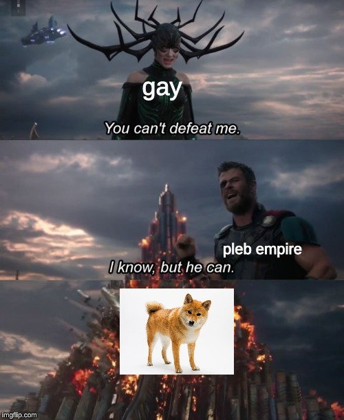 a doggo a day keeps the gay away | gay pleb empire | image tagged in you can't defeat me,doggo,gay | made w/ Imgflip meme maker