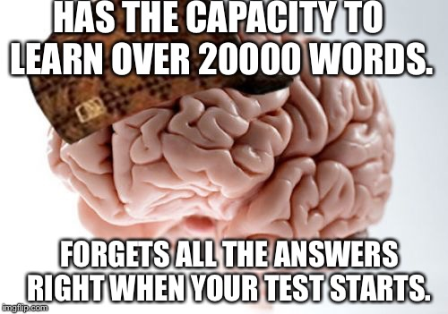 Scumbag Brain | HAS THE CAPACITY TO LEARN OVER 20000 WORDS. FORGETS ALL THE ANSWERS RIGHT WHEN YOUR TEST STARTS. | image tagged in memes,scumbag brain | made w/ Imgflip meme maker