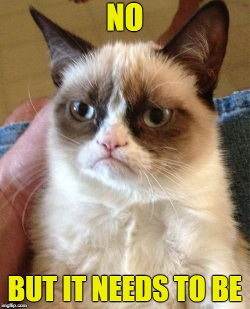 Grumpy Cat Meme | NO BUT IT NEEDS TO BE | image tagged in memes,grumpy cat | made w/ Imgflip meme maker