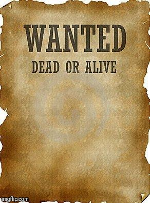wanted dead or alive | image tagged in wanted dead or alive | made w/ Imgflip meme maker
