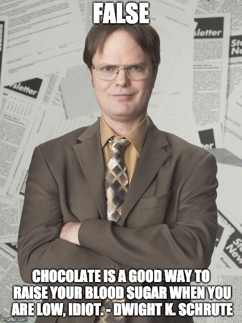 Dwight Schrute 2 Meme | FALSE CHOCOLATE IS A GOOD WAY TO RAISE YOUR BLOOD SUGAR WHEN YOU ARE LOW, IDIOT. - DWIGHT K. SCHRUTE | image tagged in memes,dwight schrute 2 | made w/ Imgflip meme maker