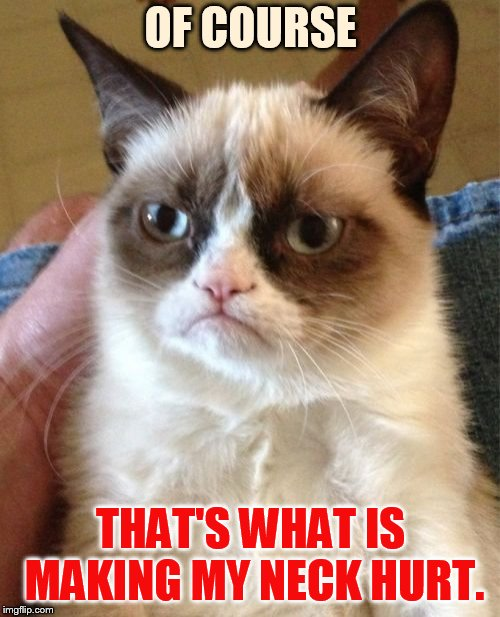 Grumpy Cat Meme | OF COURSE THAT'S WHAT IS MAKING MY NECK HURT. | image tagged in memes,grumpy cat | made w/ Imgflip meme maker