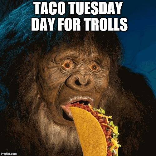 taco tuesday | TACO TUESDAY DAY FOR TROLLS | image tagged in taco troll,taco tuesday,meme,memes,funny meme | made w/ Imgflip meme maker