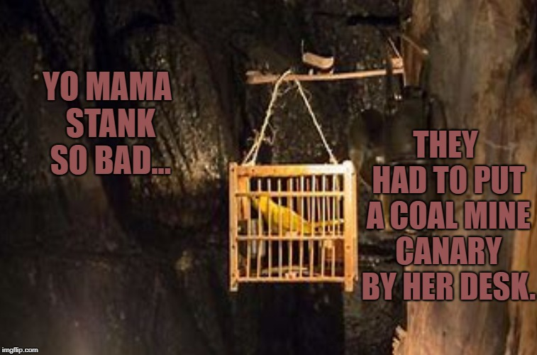When the bird dies, turn the AC down. | YO MAMA STANK SO BAD... THEY HAD TO PUT A COAL MINE CANARY BY HER DESK. | image tagged in peta,funny memes,animal rights,yo mama joke,yo mama so fat | made w/ Imgflip meme maker
