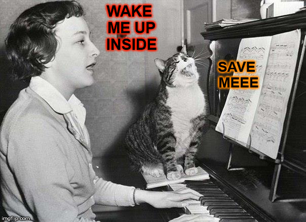 WAKE ME UP INSIDE SAVE MEEE | made w/ Imgflip meme maker