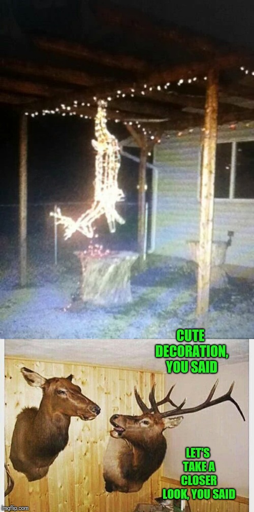 A hunter's warning | CUTE DECORATION, YOU SAID LET'S TAKE A CLOSER LOOK, YOU SAID | image tagged in reindeer,decoration,christmas,xmas,pipe_picasso,mounted | made w/ Imgflip meme maker