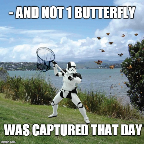 Bad Aim | - AND NOT 1 BUTTERFLY WAS CAPTURED THAT DAY | image tagged in trooper,bad luck stormtrooper,star wars,butterflies,aim | made w/ Imgflip meme maker