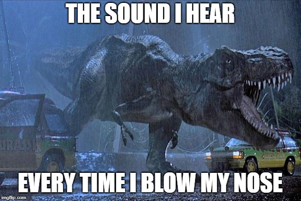 jurassic park t rex |  THE SOUND I HEAR; EVERY TIME I BLOW MY NOSE | image tagged in jurassic park t rex | made w/ Imgflip meme maker