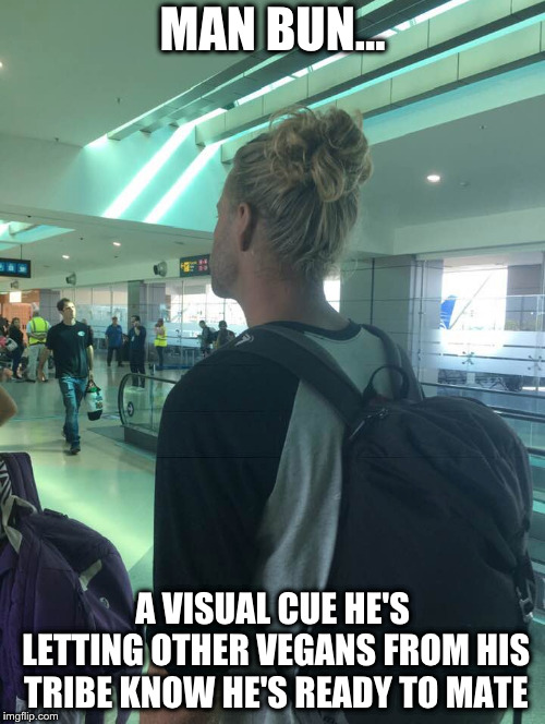 MAN BUN... A VISUAL CUE HE'S LETTING OTHER VEGANS FROM HIS TRIBE KNOW HE'S READY TO MATE | image tagged in man bun,vegans | made w/ Imgflip meme maker