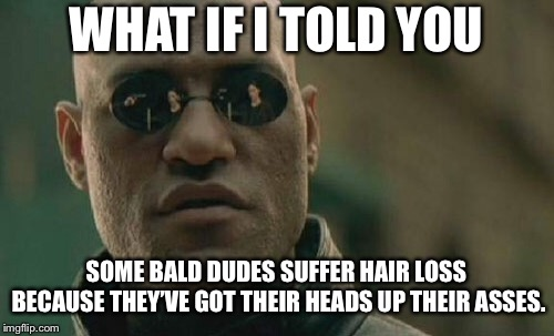 Shit for brains, head up the ass, causes hair loss | WHAT IF I TOLD YOU SOME BALD DUDES SUFFER HAIR LOSS BECAUSE THEY'VE GOT THEIR HEADS UP THEIR ASSES. | image tagged in memes,matrix morpheus,ass,head,bald,hair | made w/ Imgflip meme maker
