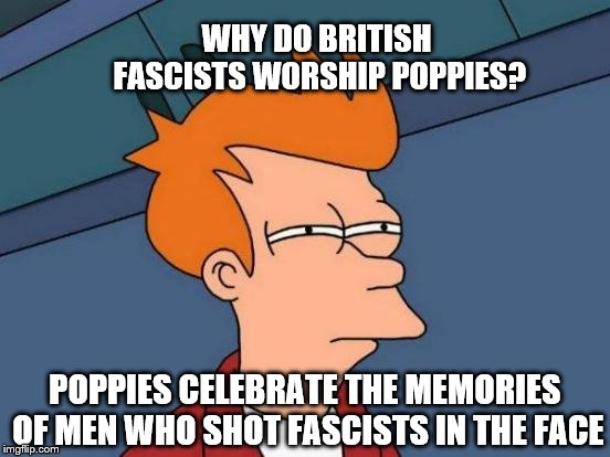 Futurama Fry Meme |  WHY DO BRITISH FASCISTS WORSHIP POPPIES? POPPIES CELEBRATE THE MEMORIES OF MEN WHO SHOT FASCISTS IN THE FACE | image tagged in memes,futurama fry | made w/ Imgflip meme maker