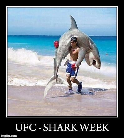 National Geographic presents | image tagged in ufc,shark week | made w/ Imgflip meme maker