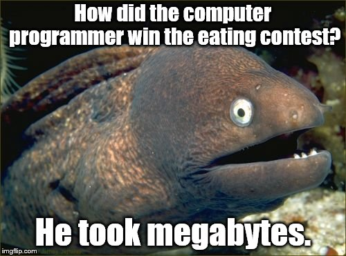 Bad Joke Eel Meme | How did the computer programmer win the eating contest? He took megabytes. | image tagged in memes,bad joke eel | made w/ Imgflip meme maker