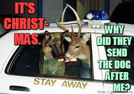 Oh Come On... | IT'S CHRIST-  MAS. WHY DID THEY    SEND THE DOG    AFTER        ME? | image tagged in memes,reindeer,police dogs,christmas,why,dog | made w/ Imgflip meme maker