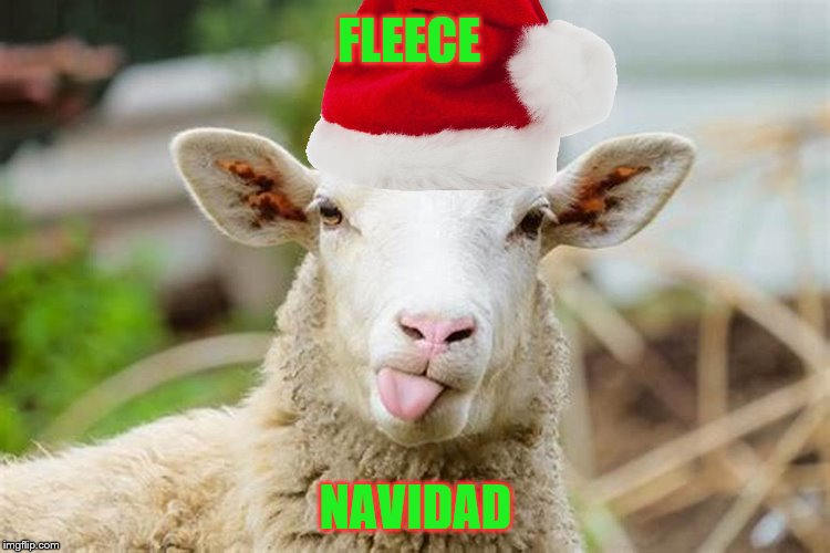 As sung by Jose Fleeciano | FLEECE NAVIDAD | image tagged in memes,christmas,sheep | made w/ Imgflip meme maker