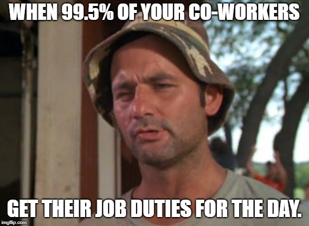 So I Got That Goin For Me Which Is Nice | WHEN 99.5% OF YOUR CO-WORKERS GET THEIR JOB DUTIES FOR THE DAY. | image tagged in memes,so i got that goin for me which is nice | made w/ Imgflip meme maker