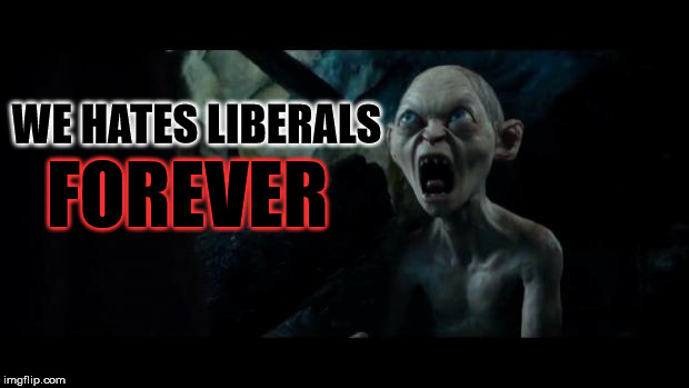 We hates it forever | WE HATES LIBERALS FOREVER | image tagged in we hates it forever | made w/ Imgflip meme maker